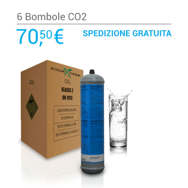 Scatola 6 bombole Co2 Usa e Getta 600gr